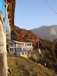 Home for the Evening at Ghandruk