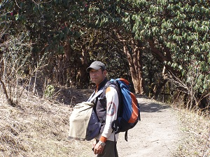 Kumar Carrying Our Bags