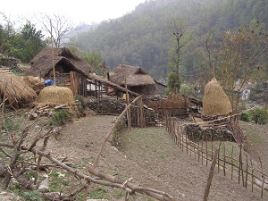 Traditional Village, Ghorepani trek