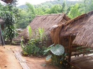 My Hut at Apa Village near Chiang Rai
