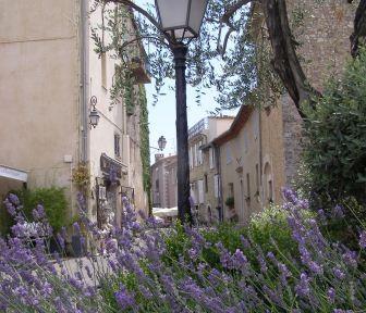 Lavender at Mougin