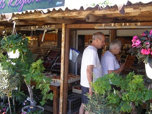 Shopping at a fruit stall in France