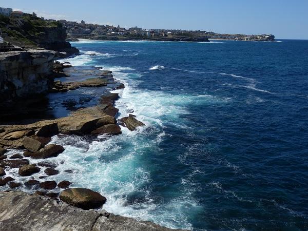 Cliffs - Bondi to Coogee Walk