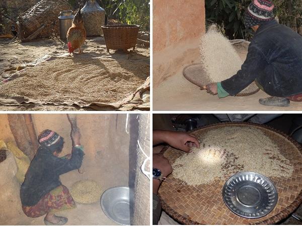 A Nepali lady preparing rice