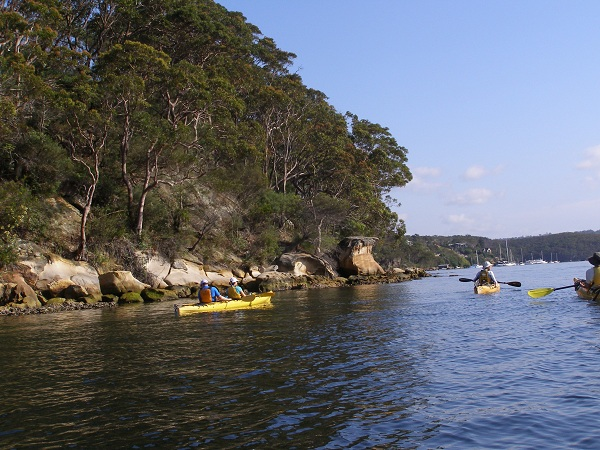 Kayakers on Middle Harbour, Sydney