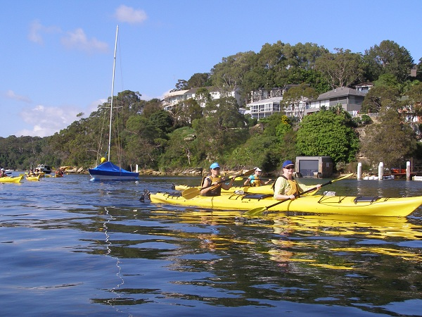Group of kayakers on Middle Harbour, Sydney