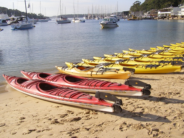 Line of kayaks at Middle Habour, Sydney