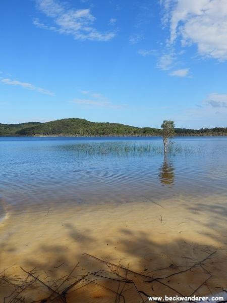 Lake Birrabean, Fraser Island
