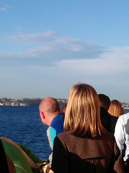 Crowd looking at Sydney Harbour