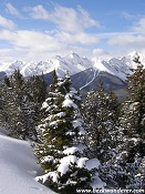 Rockies Winter Wonderland
