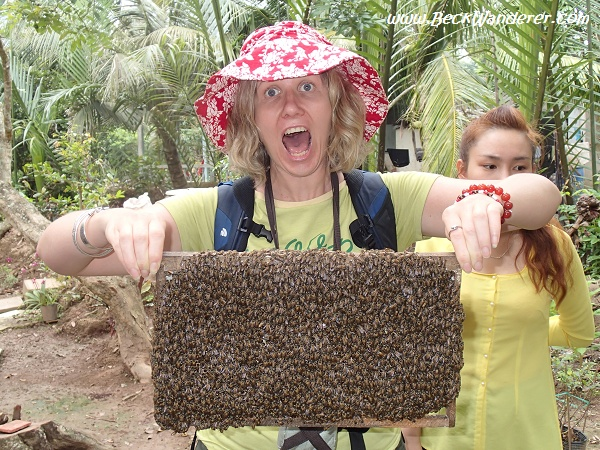 I am holding a section of a bee hive