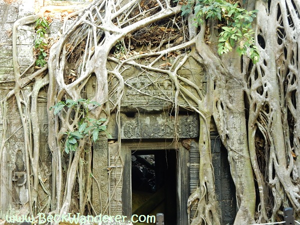 Angkor Tomb Raider Temple - Door to the jungle temple