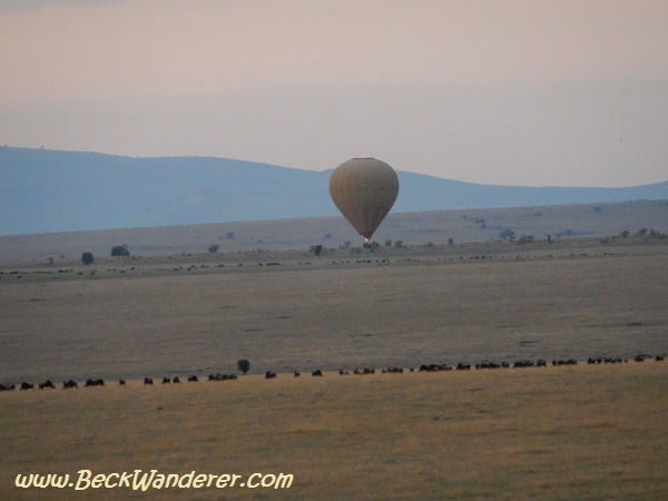 Balloon floating across the wildebeest migration, Maasai Mara