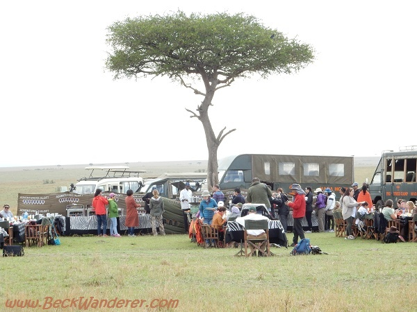 Breakfast under acacia tree, Maasai Mara